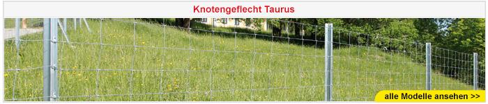 Knotengeflecht Taurus