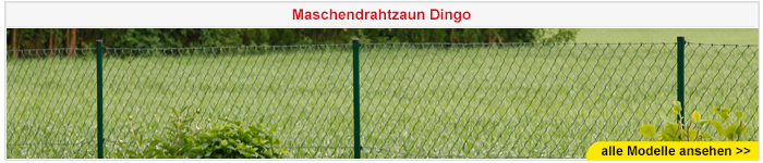 Maschendrahtzaun Dingo